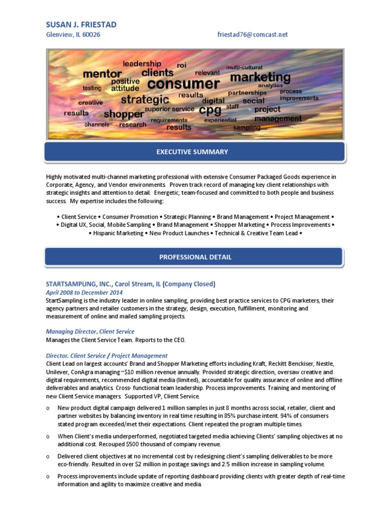 Download Marketing Director Consumer Goods in Chicago IL Resume ...