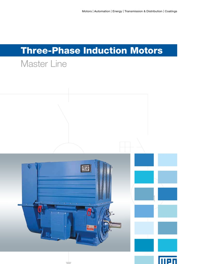 Download WEG Three Phase Induction Motors Master Line 50019089 ...