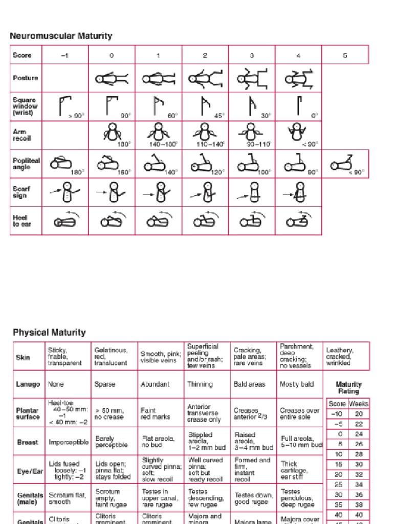 download kurva lubchenco interpretasi ballard score docx - docshare.tips