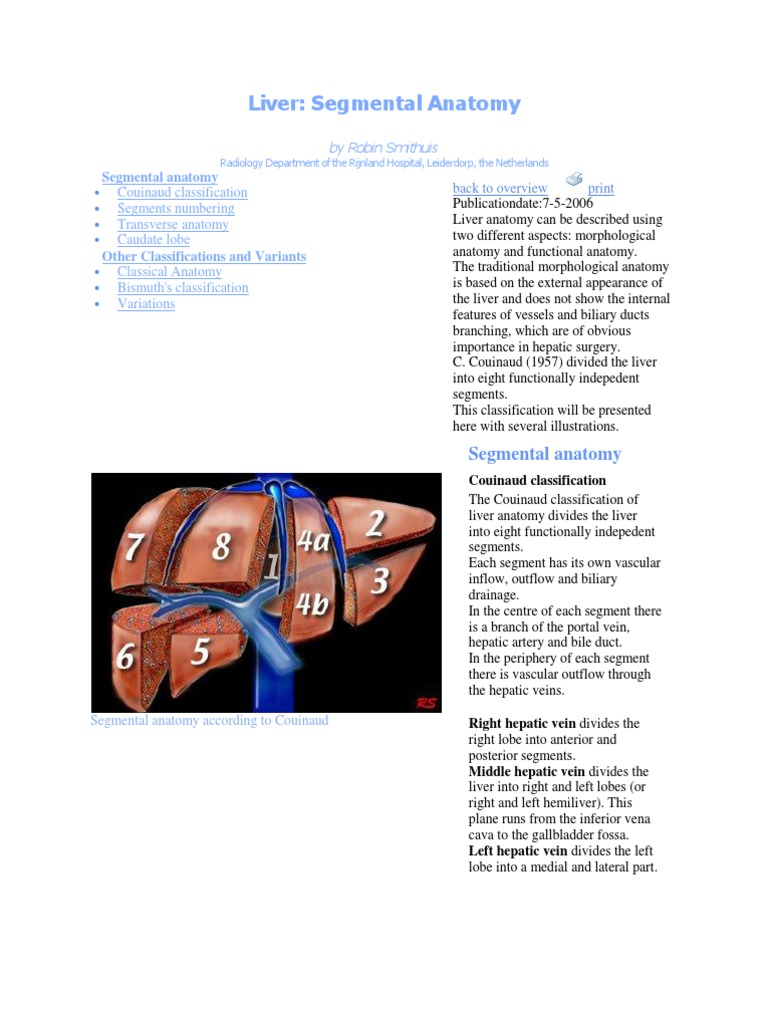 Liver Anatomy - DocShare.tips