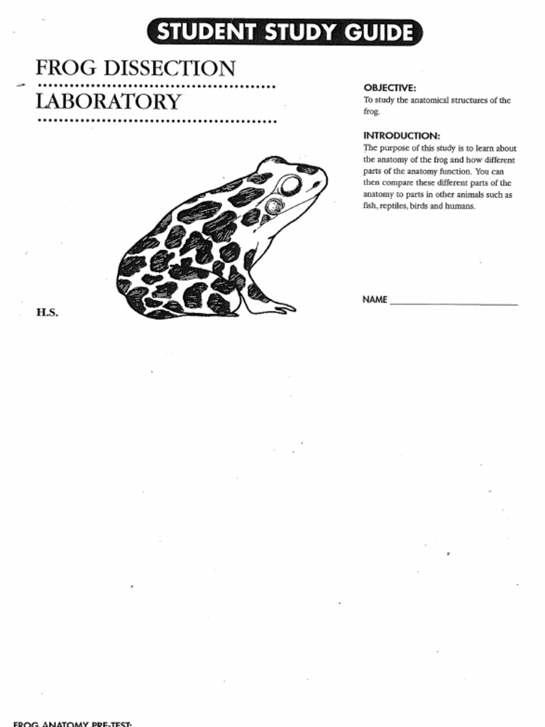 Download Frog Anatomy - DocShare.tips
