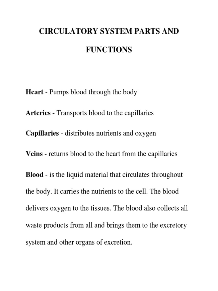 Circulatory System Parts And Functions Docshare