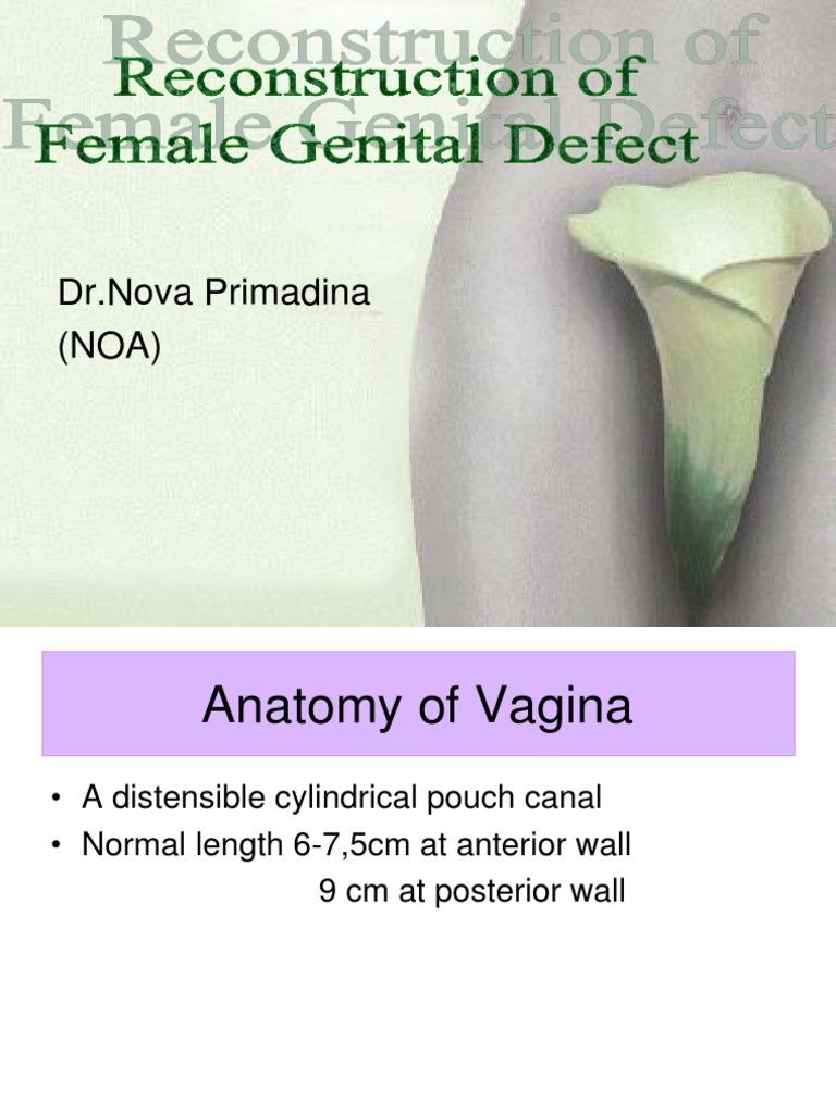 Download Eliminating Female Genital Mutilation - DocShare.tips