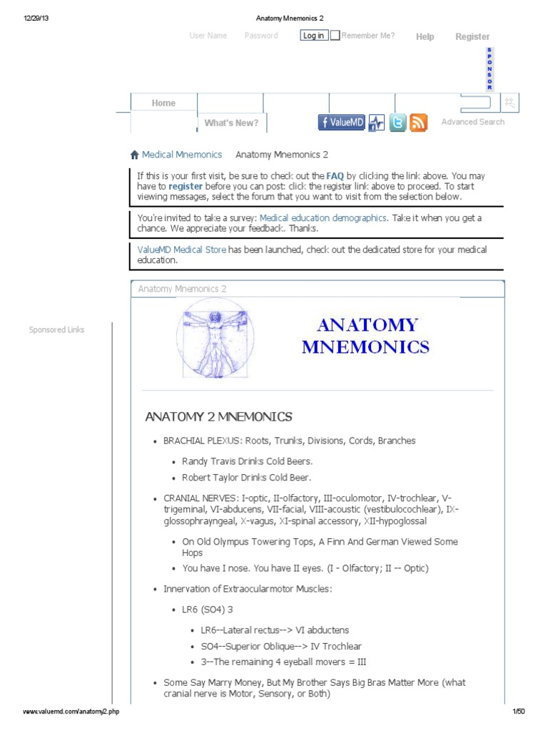Download Anatomy Mnemonics Collections for Medical Students2 ...