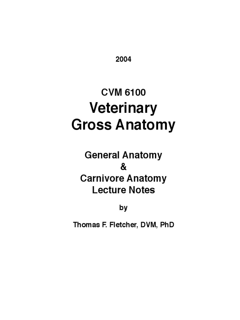 Funky Atlas Of Veterinary Clinical Anatomy Inspiration - Human ...