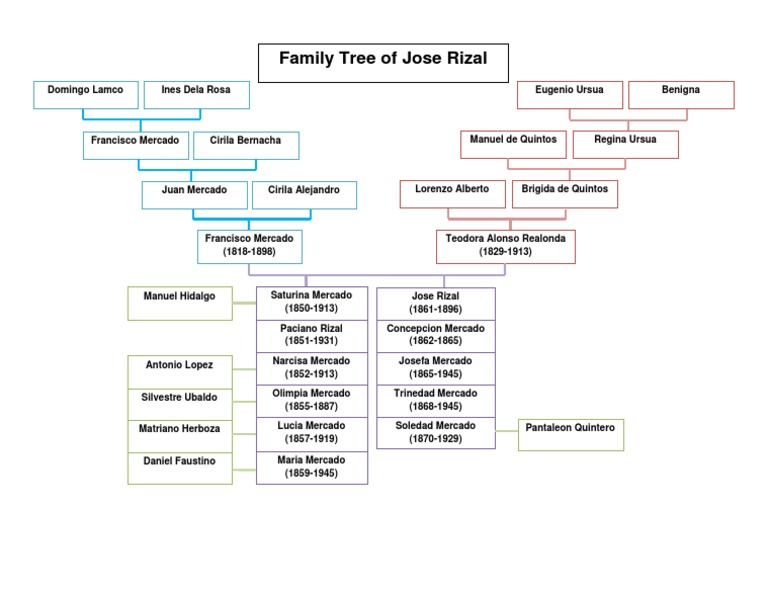 family tree of jose rizal Jose rizal came from a 13-member family consisting of his parents, francisco mercado ii and teodora alonso realonda jose and his siblings had to adopt their father's second family name 'rizal' to disassociate themselves from the links between 'mercado' and the gomburza incident.