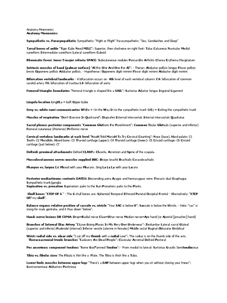 Download Anatomy Mnemonics 2 Docshare