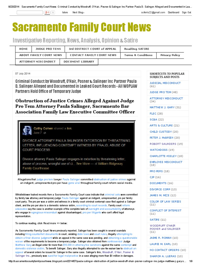 Download Sacramento Family Court News_ Criminal Conduct by
