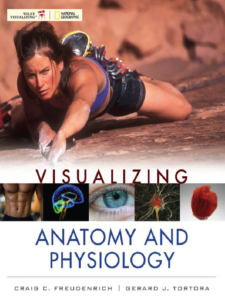 Download Visualizing Anatomy and Physiology - C. Freudenrich, G ...