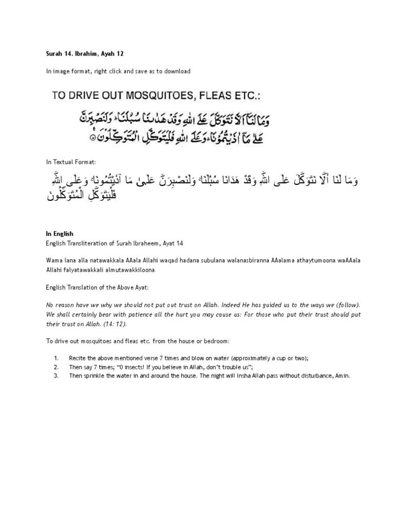 Islamic Way to Kill Bed Bugs - DocShare tips