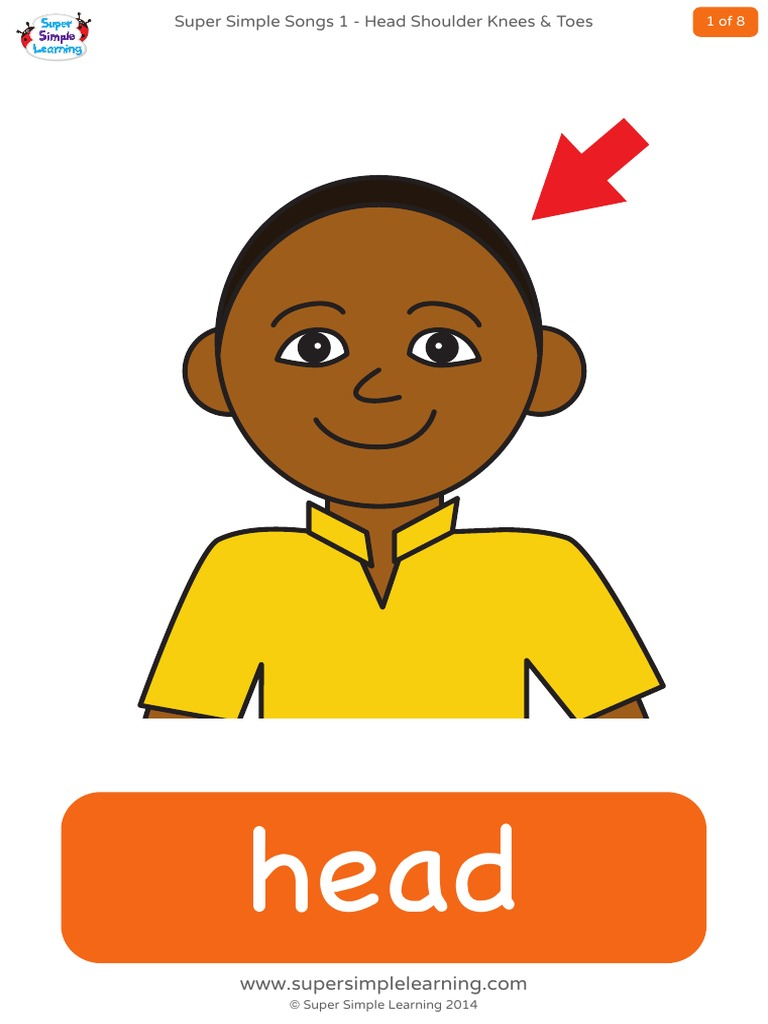 Head Shoulders Knees And Toes Flashcards DocSharetips