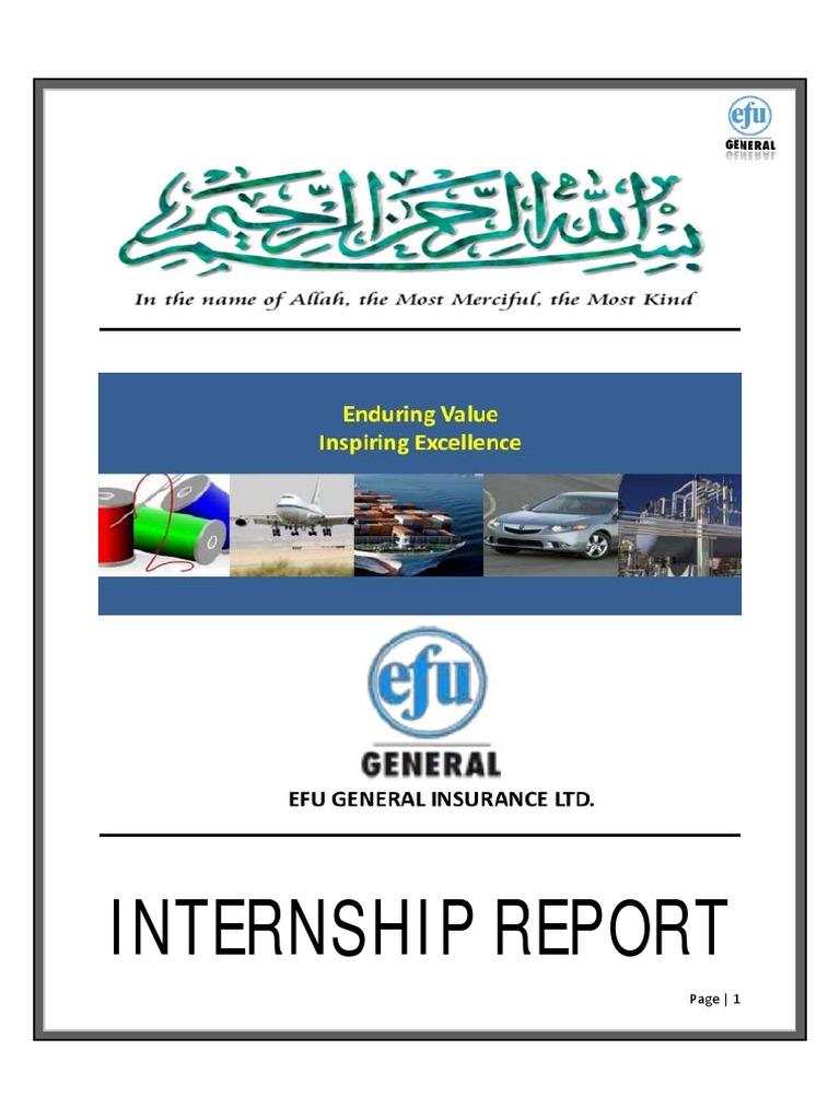 Internship Report on EFU General Insurance - DocShare tips