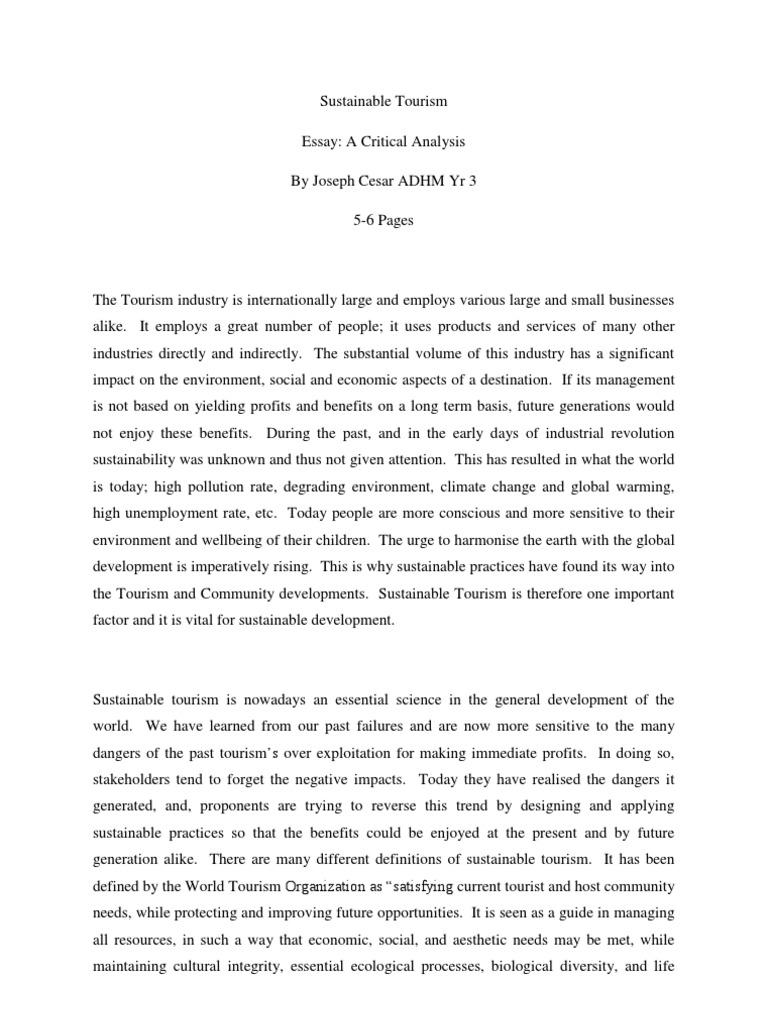 sustainability essay sustainability essay how