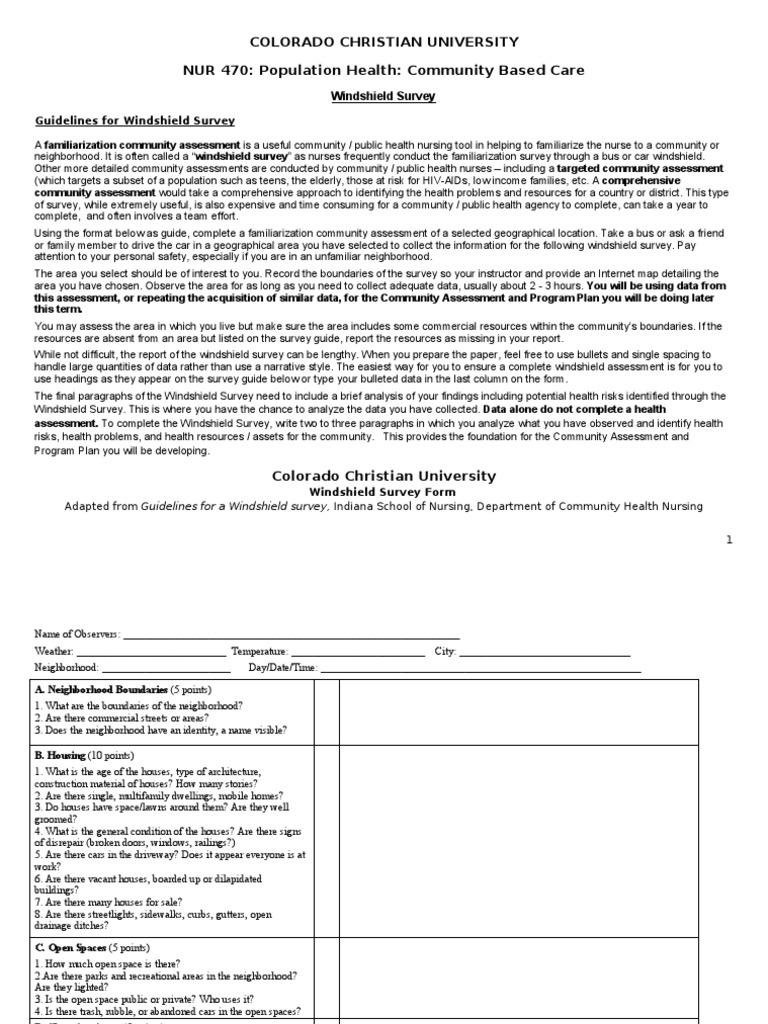 Windshield survey paper