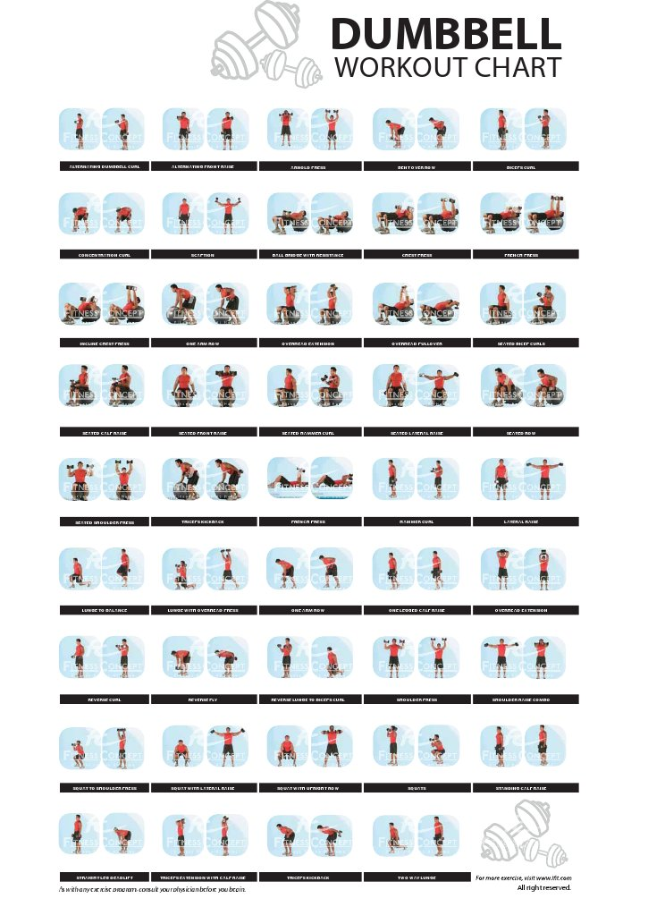 Dumbbell Workout Chart By Fitness Concept
